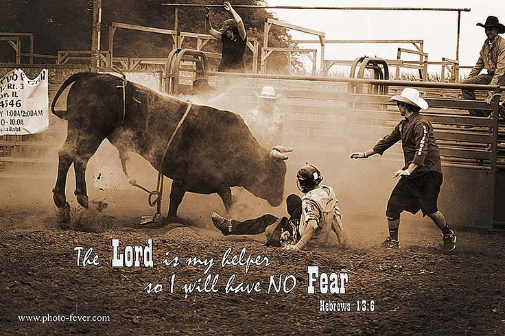 """""""The Lord is my helper so I will have no fear. Hebrews 13:6""""Ranch photography, equine images, western art images, horse quotes, rodeo photography, www.photo-fever.com #PhotoFever #PhotoFeverEQUINES #equinephotography #ranchphotography #KimberWatkins #unhitched #HorsinAround #rodeo #bullriding #bullfighting #christianquotes"""