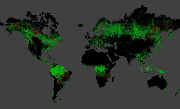 Cientistas da Nasa, do Google, da U.S Geological Survey e da Universidade de Maryland criaram o primeiro mapa mundial detalhado do desmatamento. Para criar o estudo, foram utilizadas imagens de mais de 650 mil satélites.