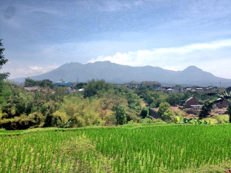 Putri Tidur @Malang, East Java, Indonesia