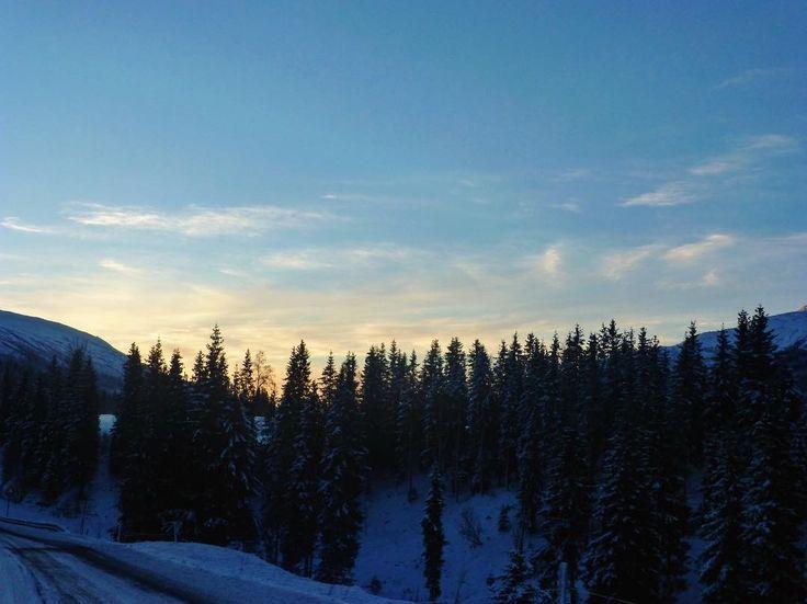 Trofors Norvège #landscape #sunset #bestview #horizon #norway #igersnorway #igworldclub #ig_photooftheday #instagood #photooftheday #beautiful #instadaily #art #amazing #bestoftheday #travel #instago #all_shots #trip #travelgram #instatravel #traveling #travelling #tourism #travelingram #igtravel #mytravelgram #instatraveling #instapassport #visiting