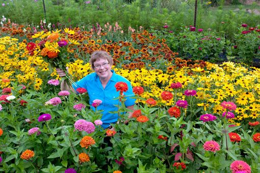 Backyard Flower Farmer : The woman in this photo is a flower farmer I want to do that!