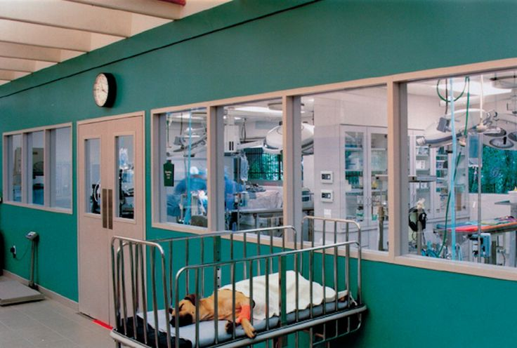 Raghava gulf hospital x ray room 5