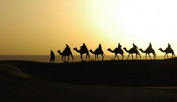 Take a sunrise camel trek over the Sahara.