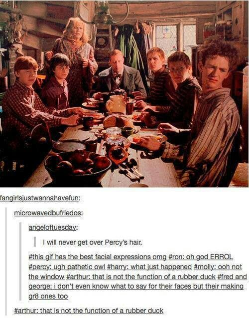Lol the weasley family. Harry potter funny