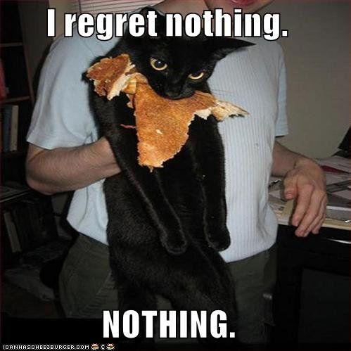 Pixie @Dani Steinhorst: Cats, Regrets Nothings, Funny Cat, No Regrets, Funnycat, Pancakes, Funnies, Funny Animal, Black Cat