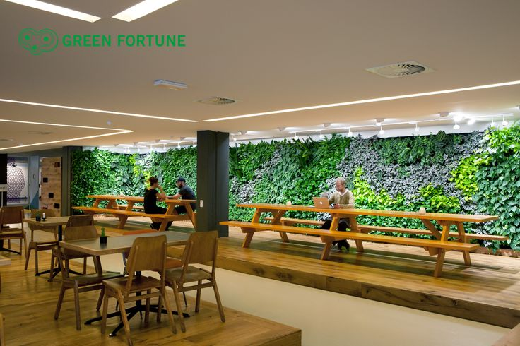 Green Fortune plantwall / vertical garden in restaurant, food retail. Tolhuistuin Amsterdam.