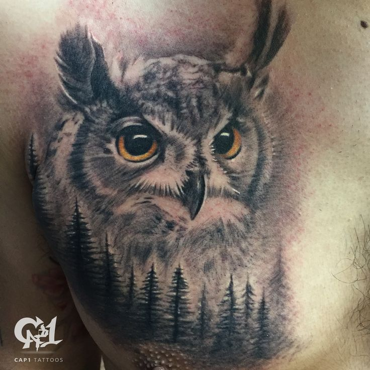 Black and grey realistic owl tattoo.