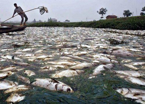 Citarum, el río más contaminado del mundo