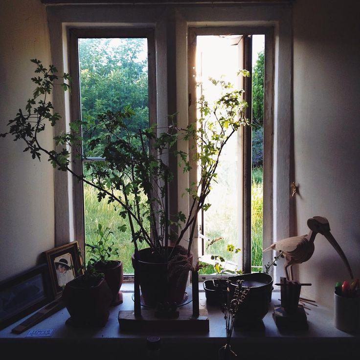 Summer window.