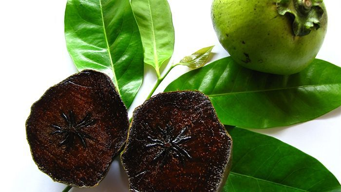 Chocolate Pudding Fruit (black sapote). This fantastical fruit tastes like...chocolate pudding!!! I want one of these trees growing in my yard!