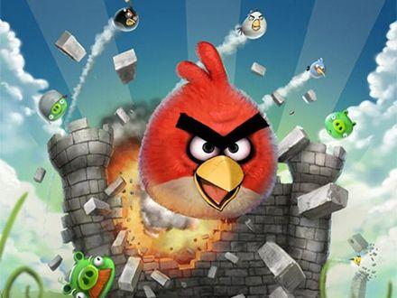 Nasional - Diskon - Si Burung Marah Angry Bird Kini dalam Bentuk Botol Minum Serba Guna Hanya Rp 7.250/pcs (4 pcs dengan 4 warna)