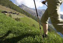 Geführte Wanderungen im Schnalstal in Südtirol - Schnalstal - Offizielles Infoportal: Urlaub in Südtirol - Italien - Gletscherskigebiet, Wandergebiet, Ötzi-Fundstelle: Hotels, Pensionen, Unterkünfte