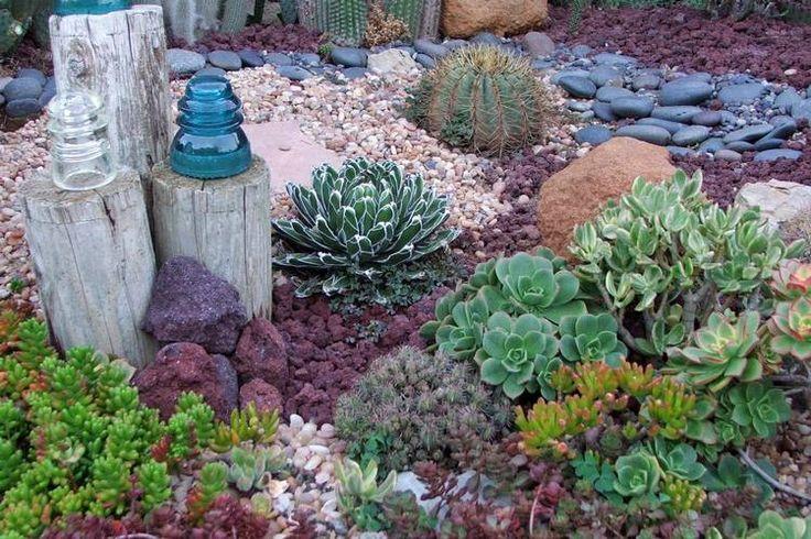 rocaille jardin avec plantes succulentes, cactus, galets, troncs d'arbres et verrerie