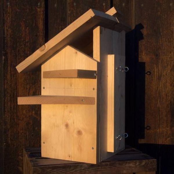 Ekornkasse: Bygg bolig til ekornet: