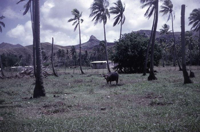 Merizo, Guam