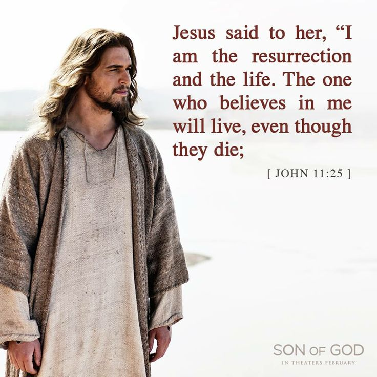 ❥ Son of God. {John 11:25}. I LOVE this scripture, it gives me hope, and in these times who doesn't need hope? God Bless!