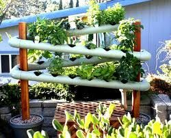 The pic alone gave me an idea of a combo hydroponic/primitive filtering device for rain catching! beautiful flowers to fill, hiding a small rain-catch tank, waters plants which will also filter water in excess. placed over low garden areas, allowing more color, using less space and one step into being more green!