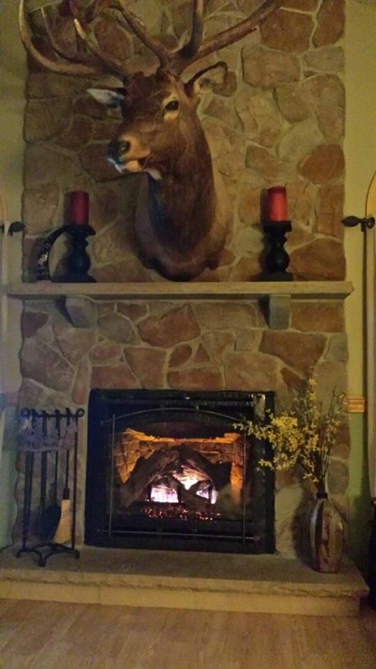 Heat N Glo Gas Fireplace Recent Installations Pinterest Gas Fireplaces And Fireplaces