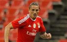 Fejsa, Benfica