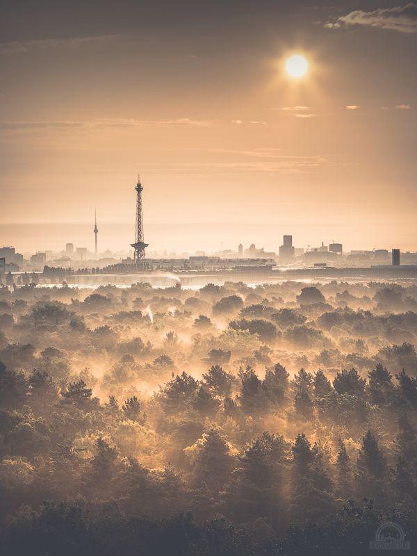BERLIN skyline from the outskirts. Im Vordergrund, der Funkturm (1926) am Hammarskjöldplatz, links im Hintergrund der Fernsehturm (1969) am Alexanderplatz