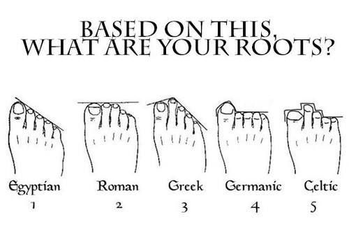 According to this I've got Egyptian roots