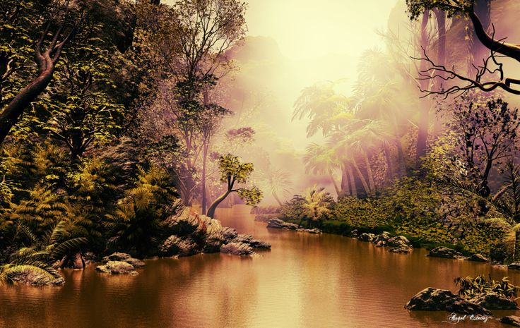 Mysterious Jungle