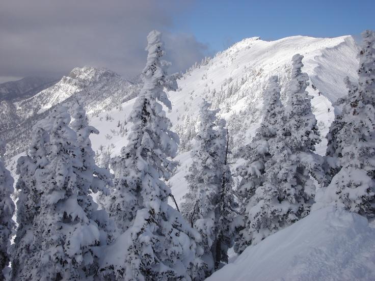 My first ridge hike on Sunday: Ridge Hiking, Snowy Ridge