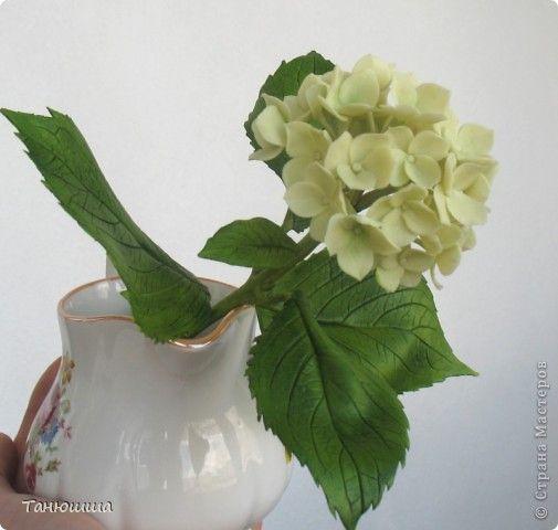 Мастер-класс Лепка: Маленький МК по лепке цветка гортензии (один из вариантов) Глина, Фарфор холодный. Фото 1