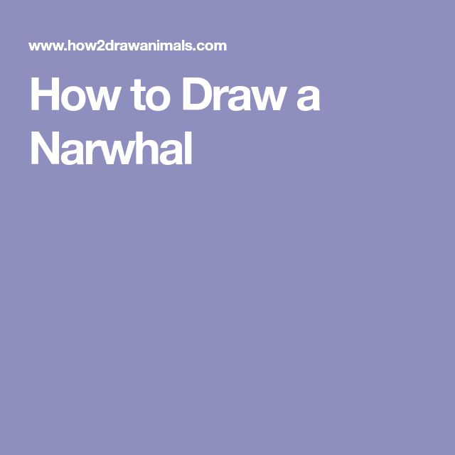25 gorgeous narwhal drawing ideas on pinterest cute narwhal narwhals and kawaii drawings