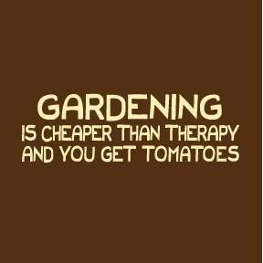 Can't wait to get some of those tomatoes! I need some garden