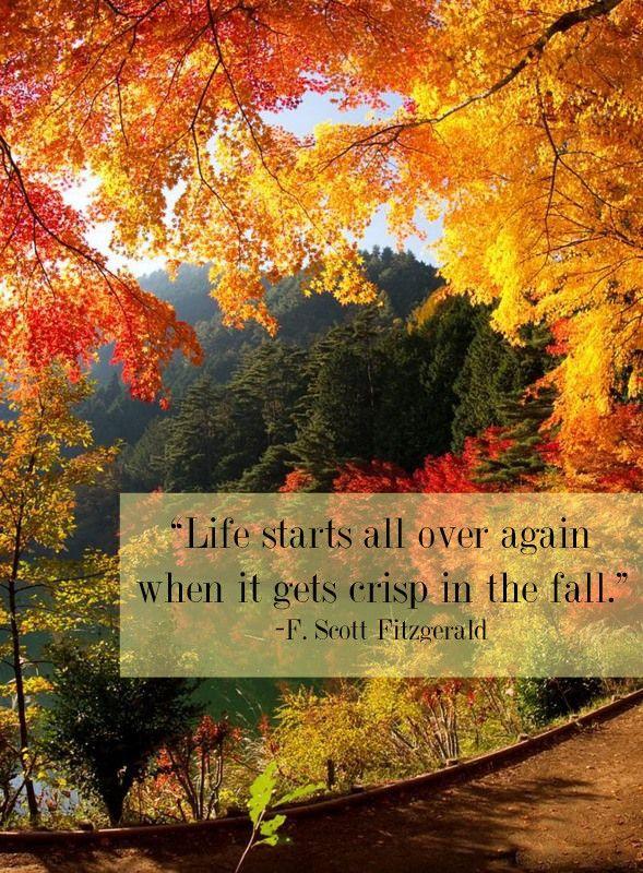 Exceptional Fall, F. Scott Fitzgerald