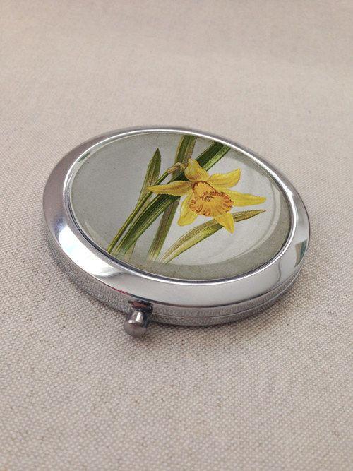 Narcis - zrcátko