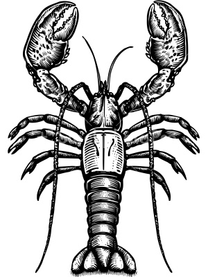 1000+ images about Lobster Arts & Crafts on Pinterest ...