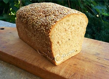 """Our """"go-to"""" #homemade #bread. Based on the basic light #wholewheatbread, we use this #recipe: http://www.foodcult.com/lightwholewheatbread.php, add 1/4 C ea of #bran #wheatgerm and #psylliumhuk plus some #chiaseed to the water. Then we start with only 2/3 C (max) whole #wheat #flour and finish with #organic (#unbleached) white. #pumpkin seeds are added in during the forming stage. Roll the formed dough is #sesameseeds just before putting in the loaf #pan. #Food matters..."""