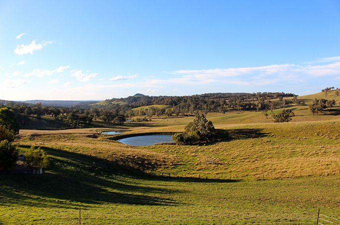 McVitty Grove the view – Photo by: Belinda Luksic
