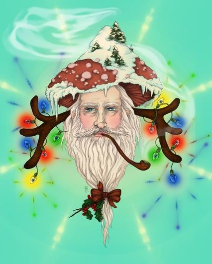 Shaman Clause - the shamanic origins of Christmas rituals we use today...fascinating!