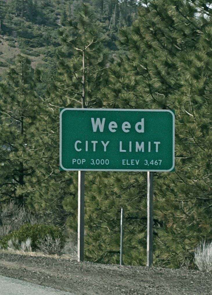 Weed CA .. my hometown