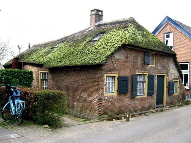 Vergeten dorpen en buurtschappen in de Tielerwaard (Betuwe). / Vergeten dorpen en buurtschappen Neder - Betuwe, Tielerwaard en Maas en Waal. Drumpt en Zennewijnen.   Hennepe.jouwweb.nl