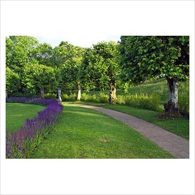 Pleached lime arc around the pond with pathway, lawn and Salvia - Gunnebo Slott, Sweden