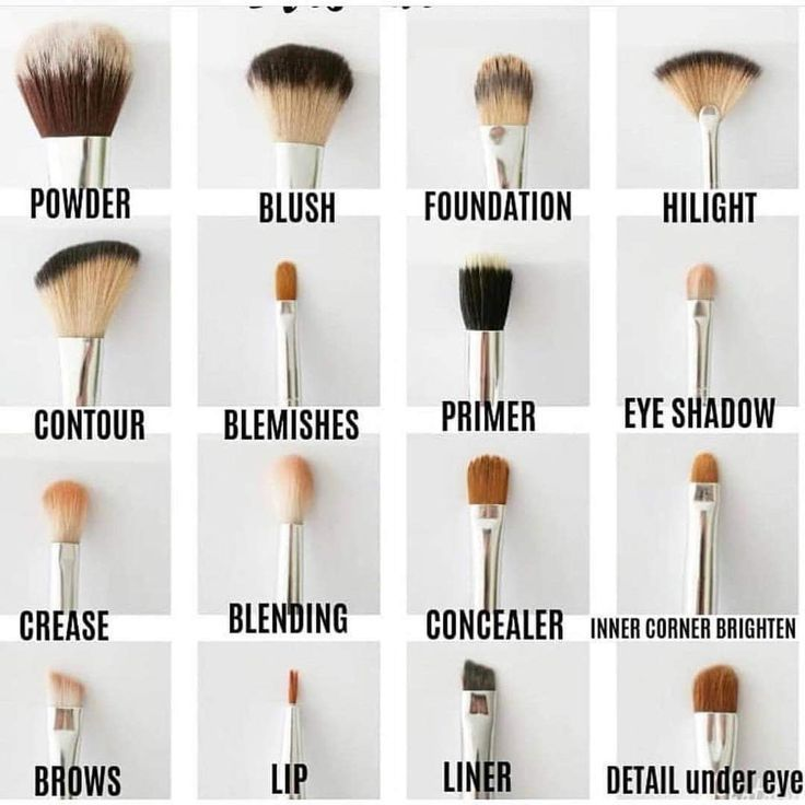 Makeup Tips for Beginners Beauty Tips
