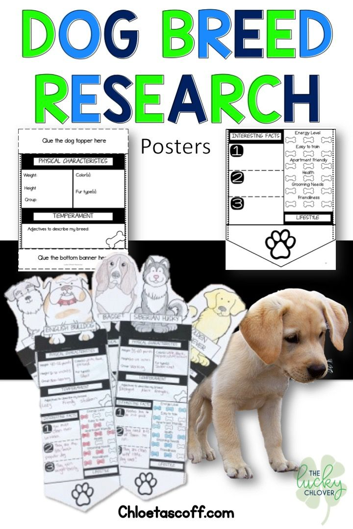Research Poster Upper Elementary Writing Elementary Writing Classroom Routines And Procedures