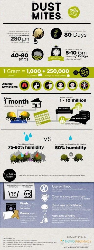 #INFOgraphic > Dust Mite Protection: They are everywhere. Dust mites are super micro bugs that live in warm places and live on dead human skin cells. They find their shelter right after you settle in a new home and they love to share bed, sofas, linen and other home accessories with you. Are you going to let them populate for good?   > http://infographicsmania.com/dust-mite-protection/