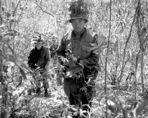 Republic of Korea (ROK) forces in the jungle near Qui Nhon.    #VietnamWarMemories