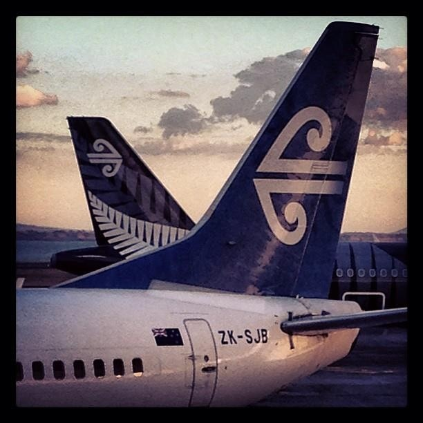 Air New Zealand. This is the airlines we flew on from LA to New Zealand and back to LA stopping in Honolulu both ways.