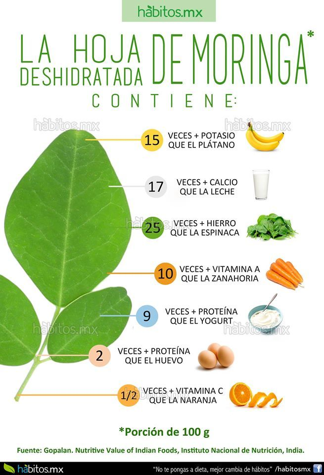 Hábitos Health Coaching | LA HOJA DE MORINGA