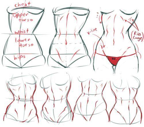 anatomy tumblr tutorial - Tìm với Google