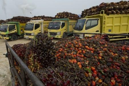 Target Kementerian Pertanian sebanyak 200 perusahaan minyak kelapa sawit sudah tersertifikat Indonesia Sustainable Palm Oil (ISPO) tahun ini nampaknya sulit tercapai. Hingga September 2014 ini baru sekitar 63 perusahaan minyak kelapa sawit yang sudah mengantongi ISPO. Jumlah tersebut bahkan tidak sampai 10 persen dari jumlah perusahaan minyak kelapa sawit yang total sekitar 800 perusahaan. Batas waktu perusahaan untuk