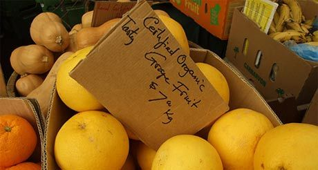Markets Online, your guide to the thousands of markets Down Under.