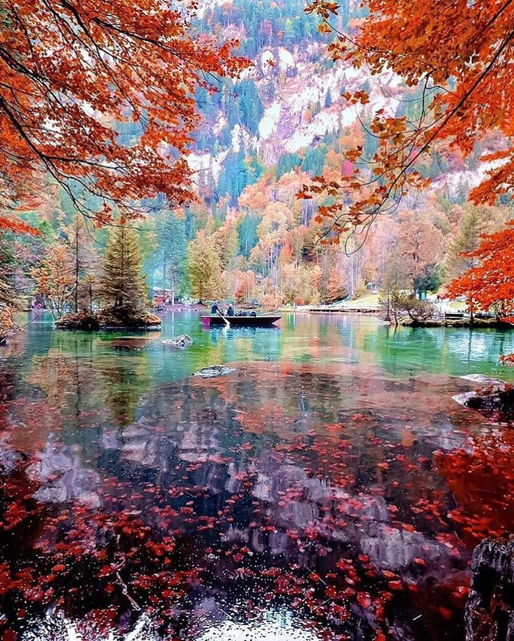 Amazing Nature: Best 25+ Switzerland Ideas On Pinterest