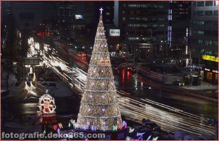 Weihnachtsbäume mit Lichtern Fotografie